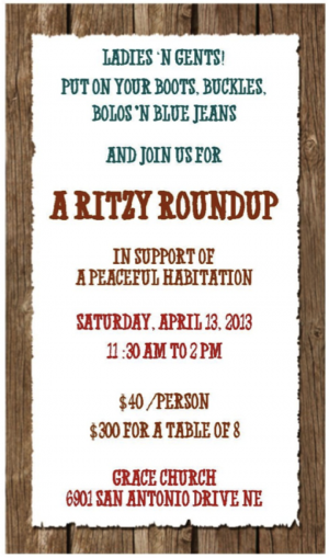 APH Ritzy Roundup 2013